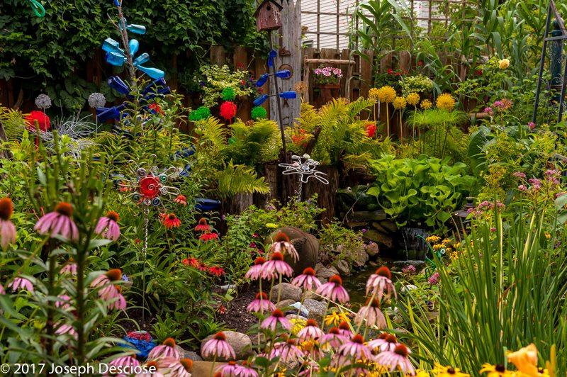 Buffalo, NY garden