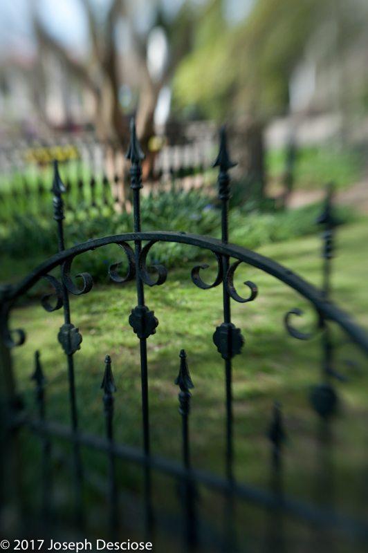 Jasminehill, Iron Gate