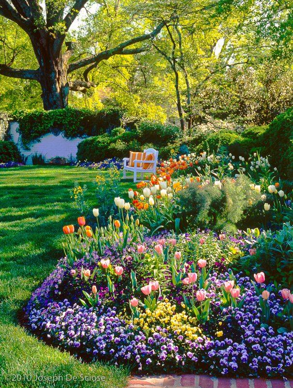 Perennial and annual garden