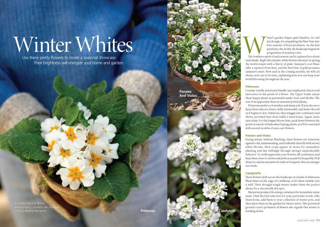 Winter Whites, Southern Living Magazine, January 2008