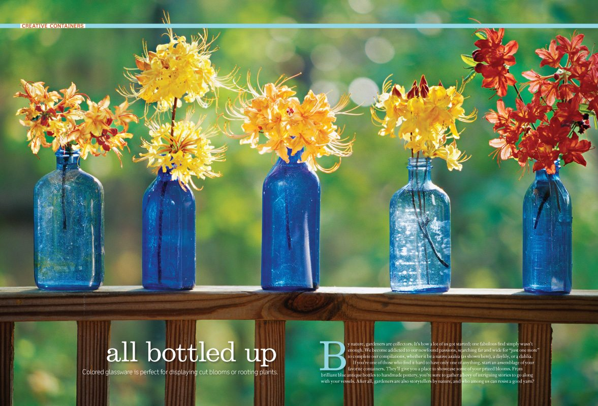 All Bottled Up, Southern Living Magazine, Azalea flowers, Photograph Joseph De Sciose