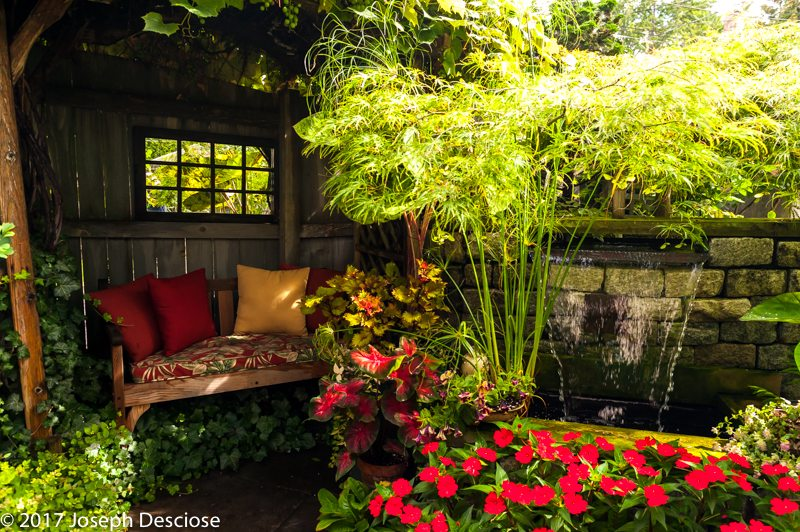 Buffalo, NY backyard garden outdoor living