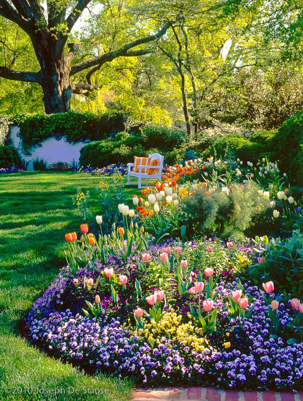 Perennial and annual garden