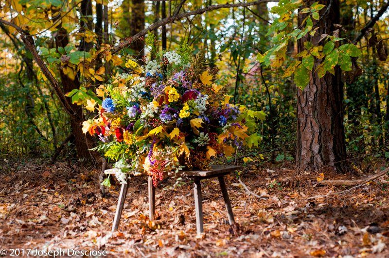 Forest Bouquet