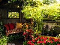 Buffalo, NY backyard garden outdoor living