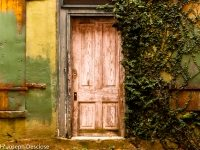 An old wooden door on an old building in an alley way.
