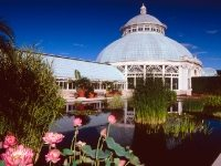 Photo, Conservatory at the New York Botanical Garden