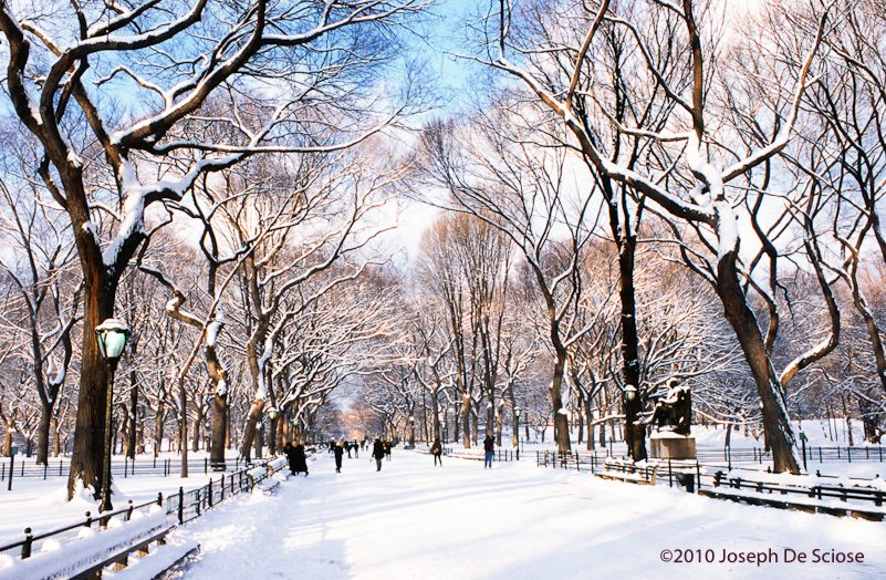 The Mall after a snow fall, Central Park