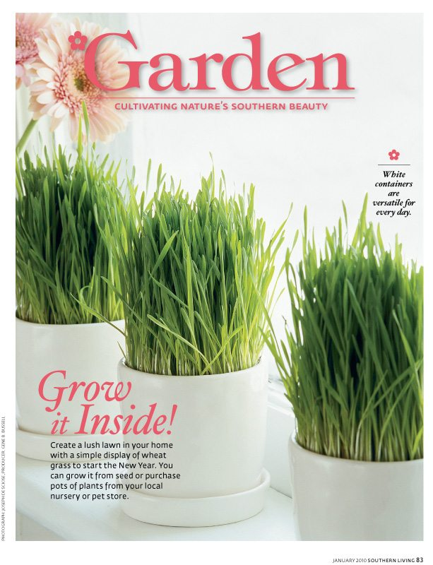 January 2010, Southern Living Magazine, wheat grass, Photograph Joseph De Sciose