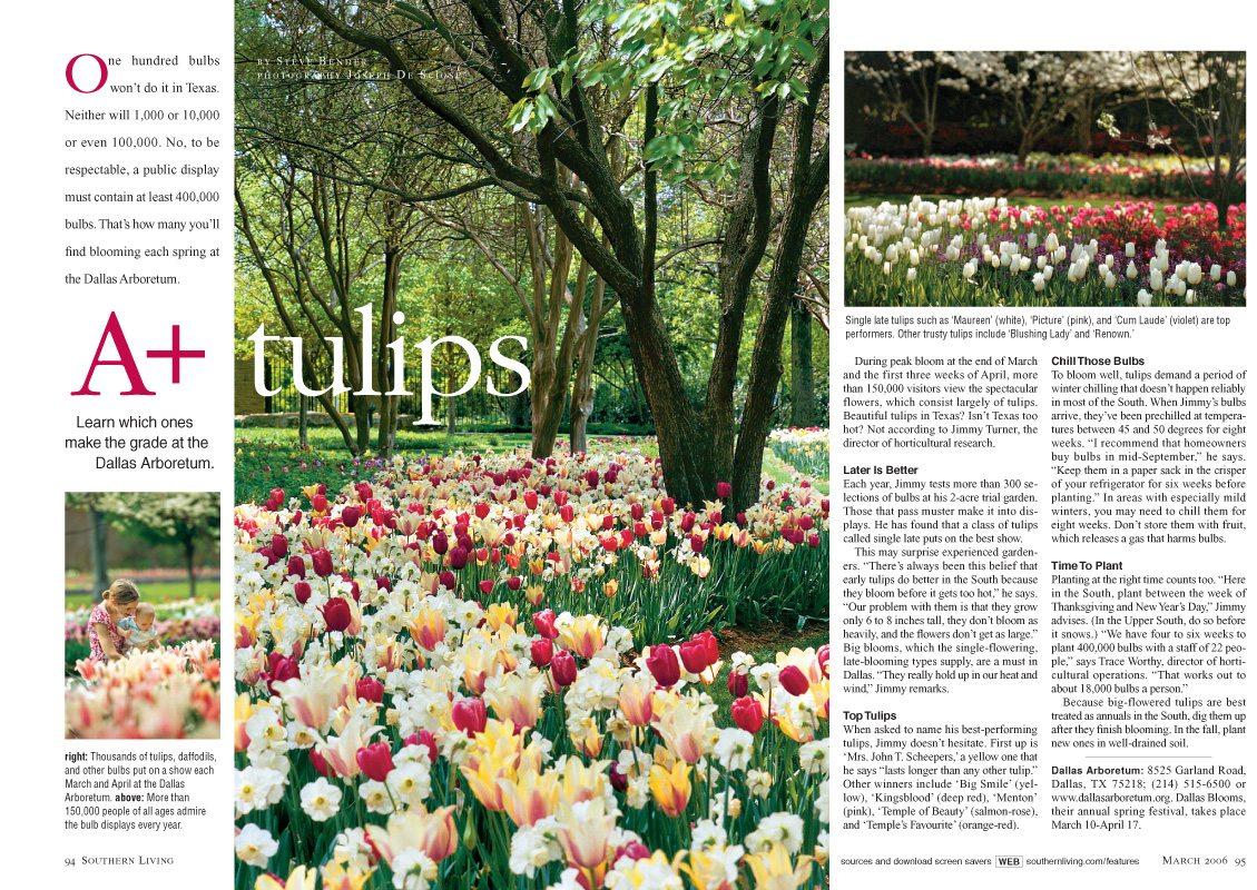 Dallas Arboretum, March 2006, Southern Living Magazine, tulip dispaly