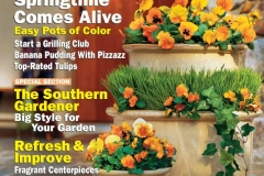 Cover Southern Living Magazine, March 2005, pansies, containers, photograph, Joseph De Sciose