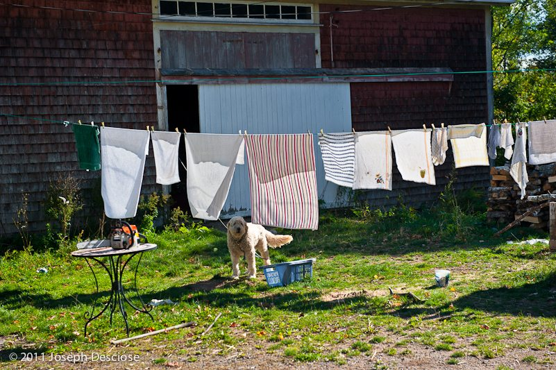 Clothes Line, Nova Scotia